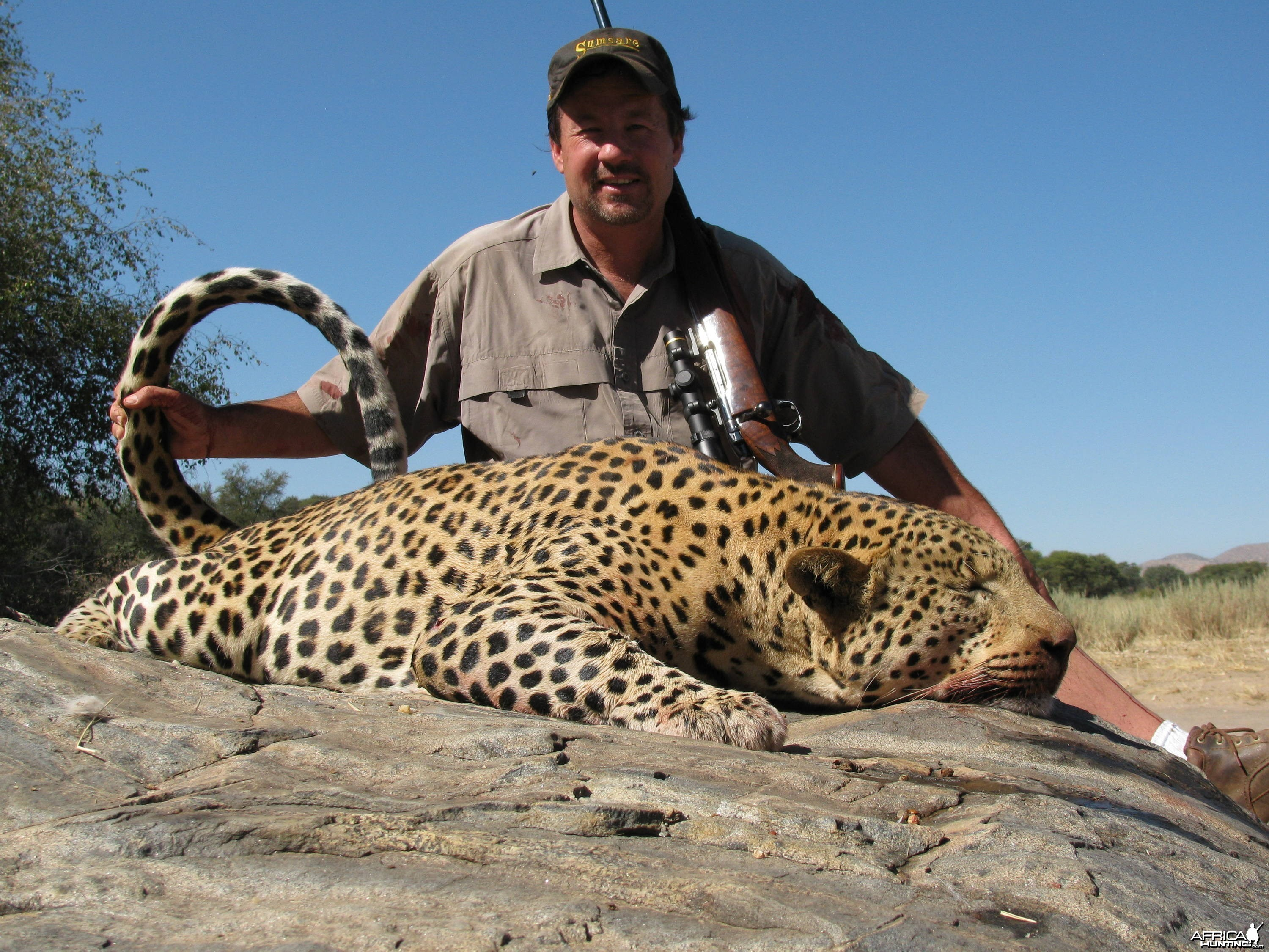 Record Book Leopard - Sparks Hounds