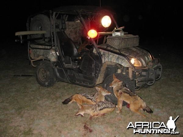 Predator Calling on Tribal - Communal Farm Land