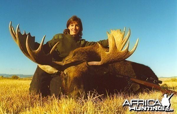 Shiras Moose '02 - Montana
