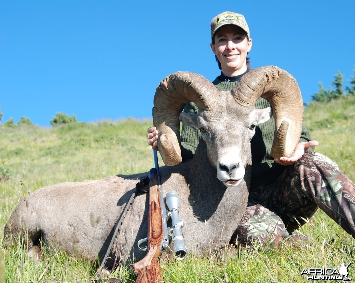 Bighorn Sheep '07 - New Mexico