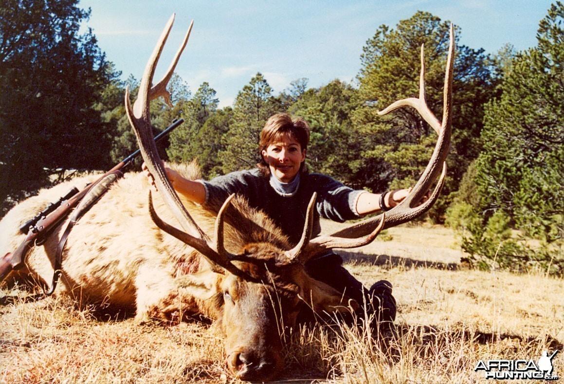 Elk '03 - New Mexico