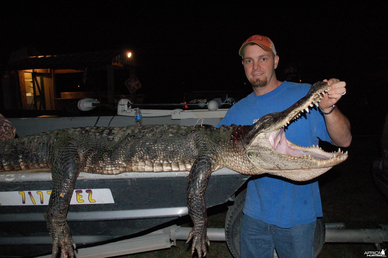 Texas Gator