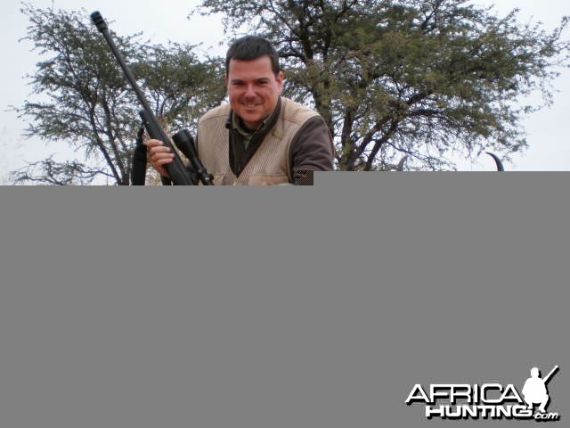 Hunting Springbok in South Africa - Ram 12 inches long