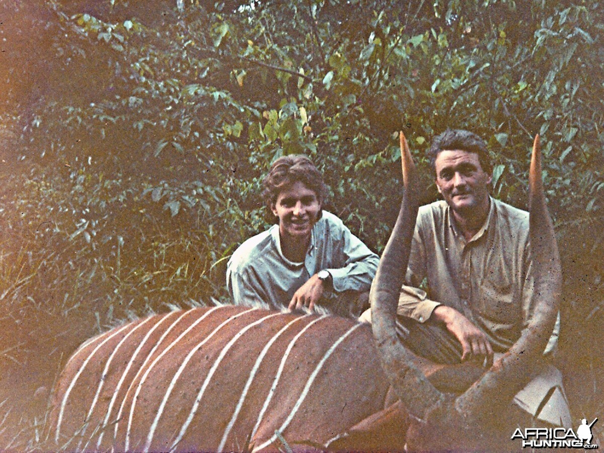 Hunting Bongo in South of Cameroun in 1989