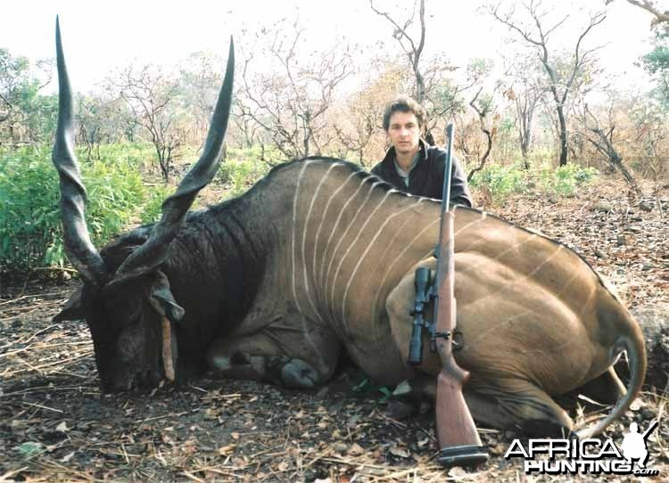 Big Giant eland hunted in CAR