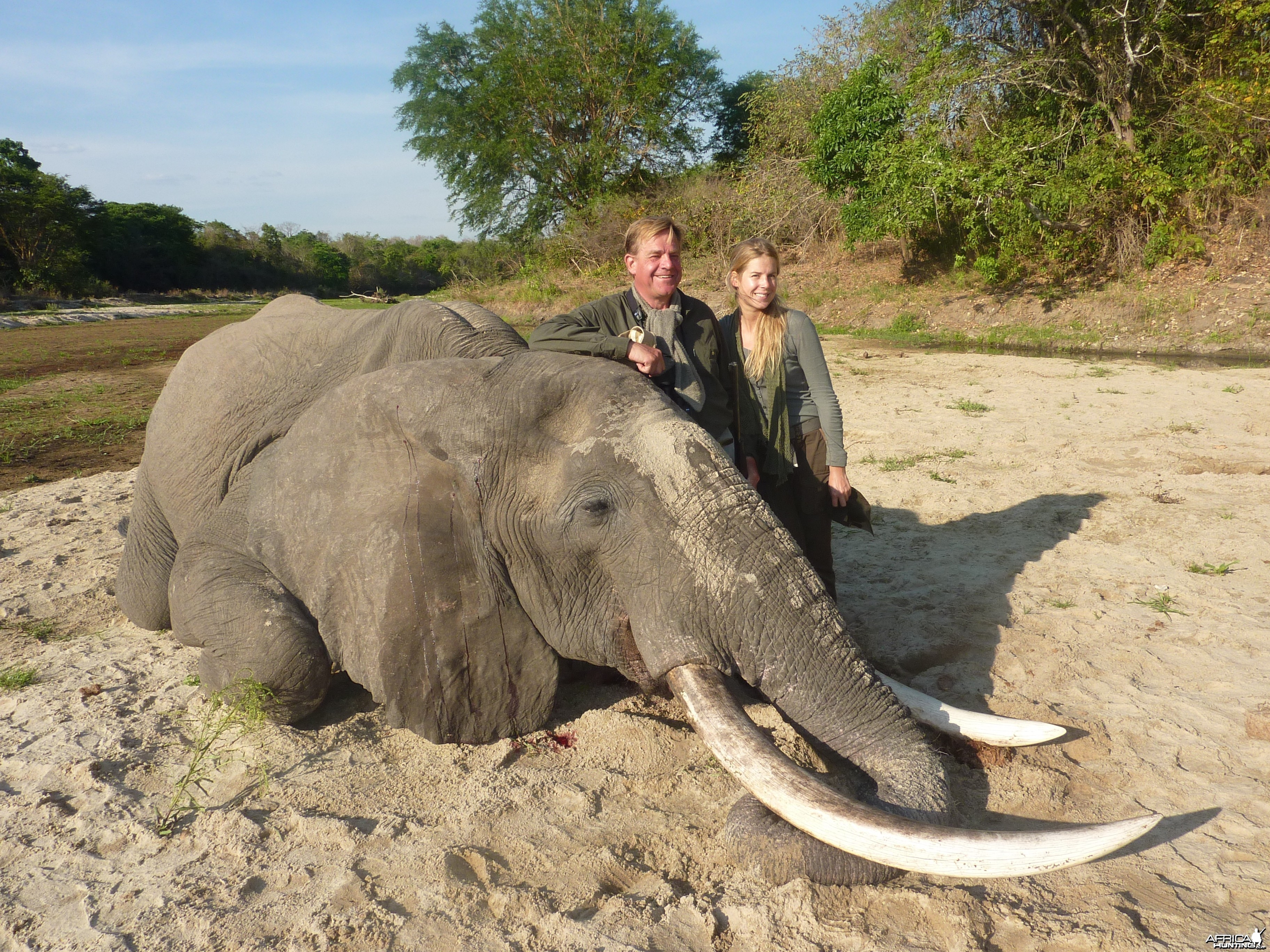 Big Elenpahnt hunted in Tanzania