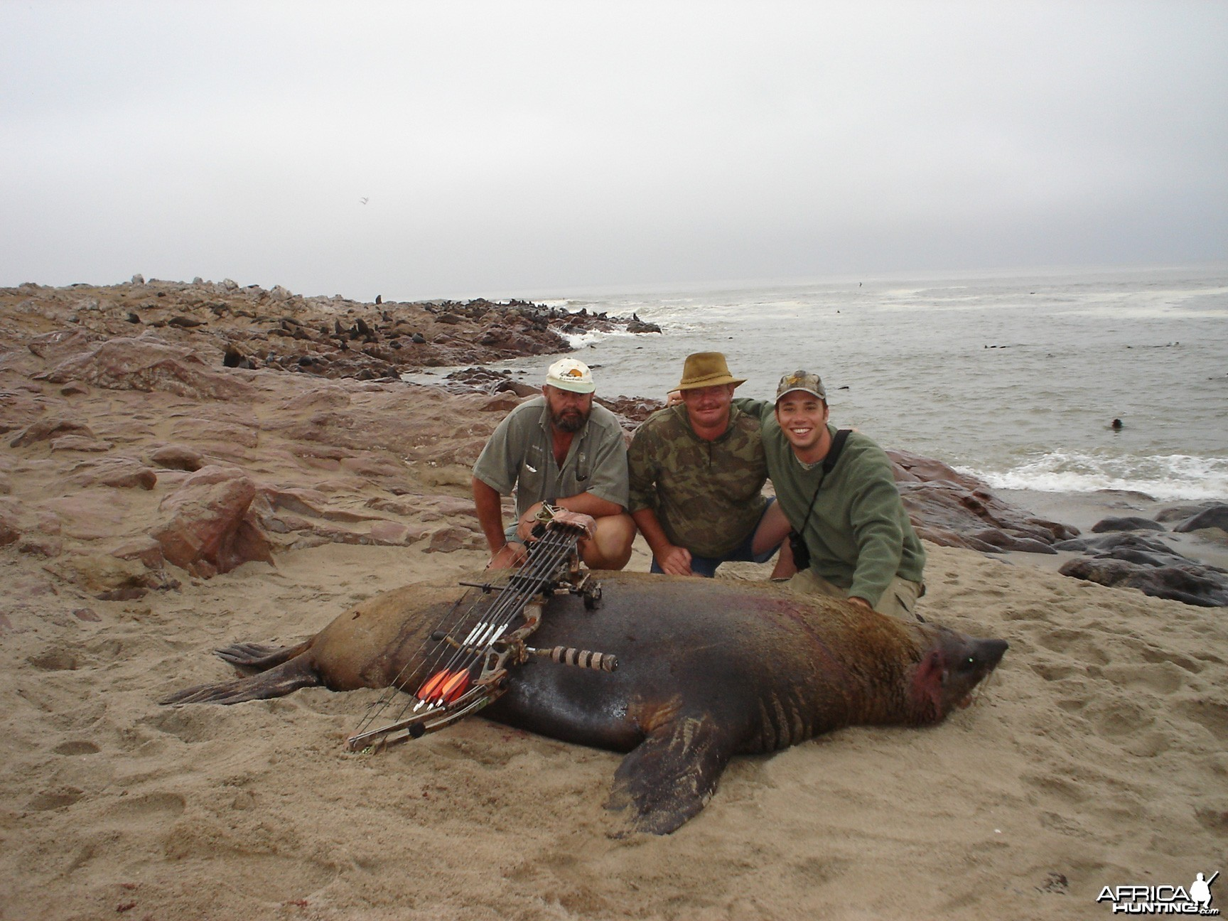 Bow Hunting Seal in Namibia