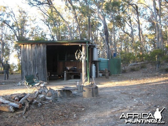 Wild Ram cabin