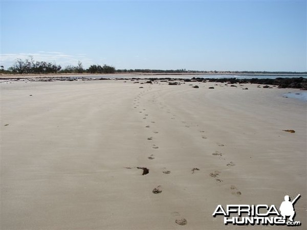 Remote Beach of Arnhemland, Australia
