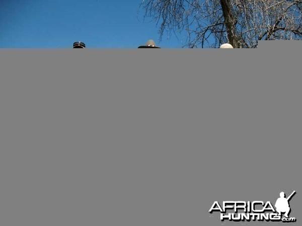 104 & 60 pound tuskers - Johan Calitz Safaris - PH Willy McDonald