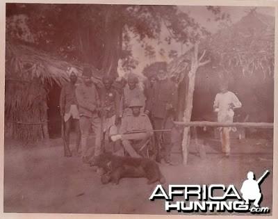 Hunting Bear - India
