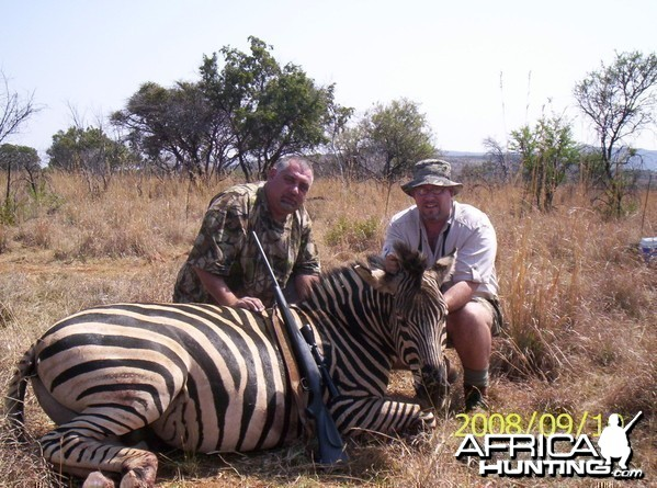 Zebra - Bushwack Safaris