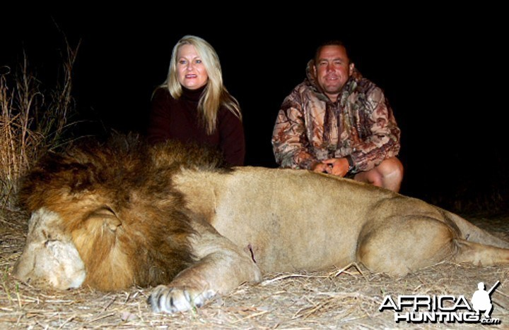 Lion Hunted In Zambia
