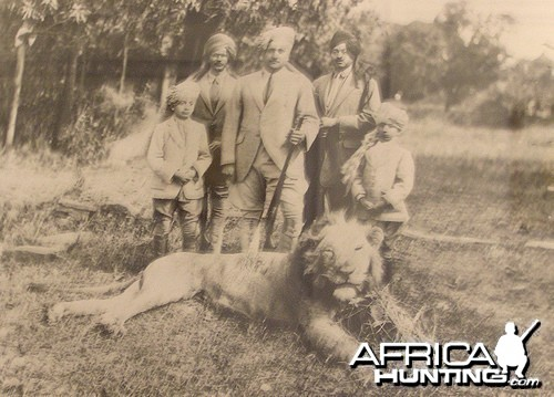 Asiatic Lion Hunt