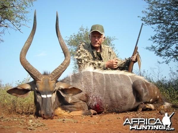 31 inch Nyala hunted with Leeukop Safaris Zululand