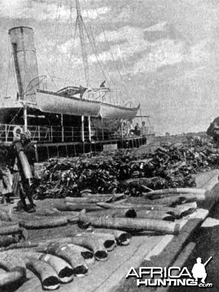 Ivory shipments 1907