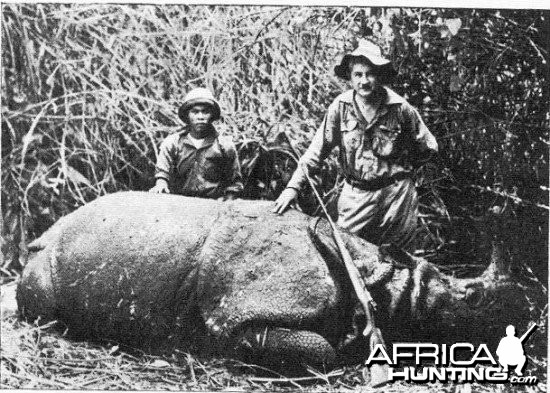 Rhino India