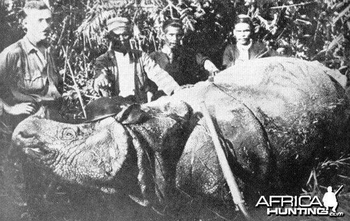 Rhinoceros India