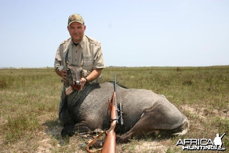 Hunting Nilgai in US