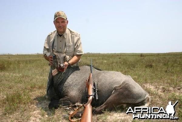 Hunting Nilgai in US