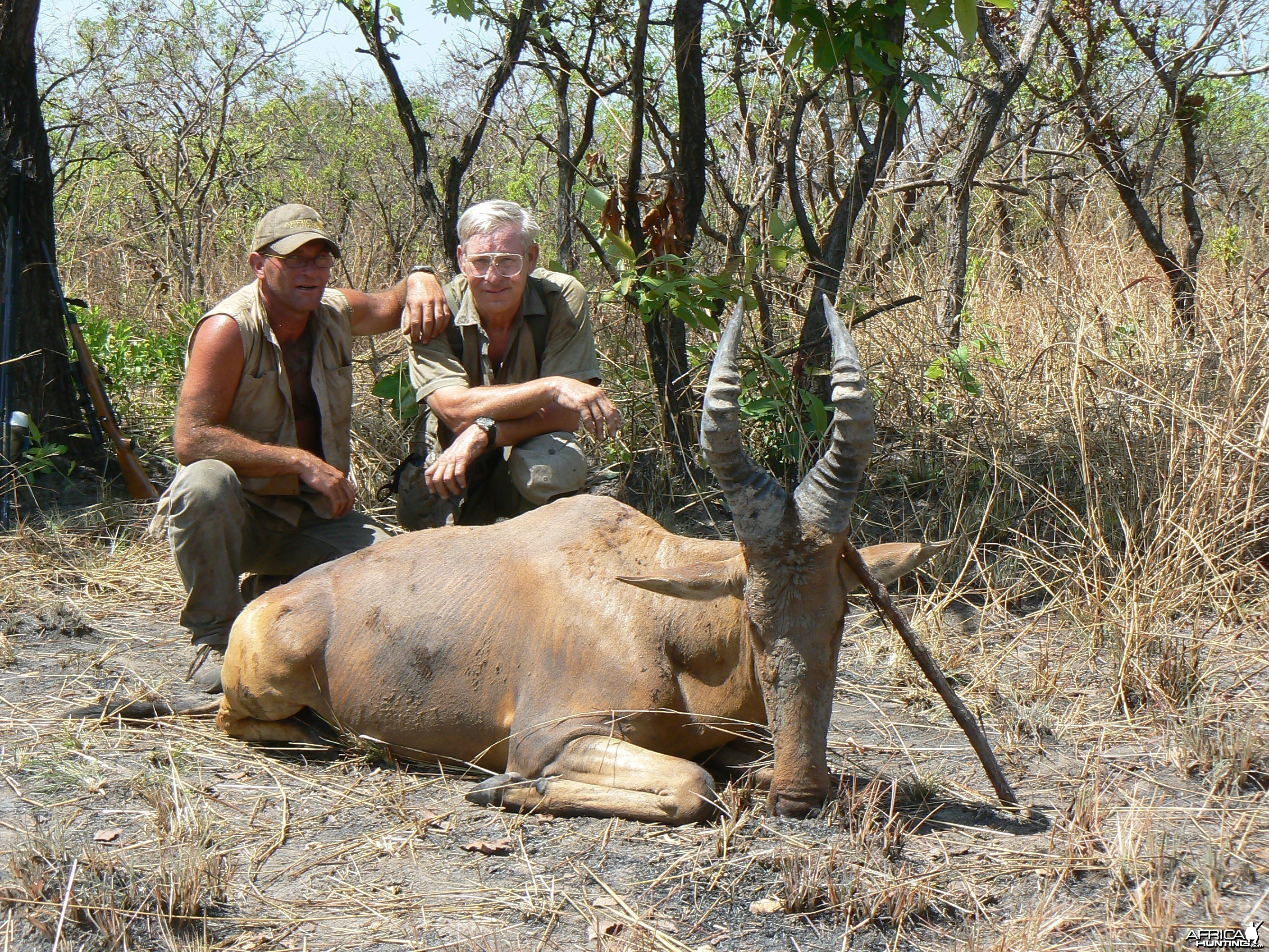 Lelwel hartebeest hunted in Central African Republic