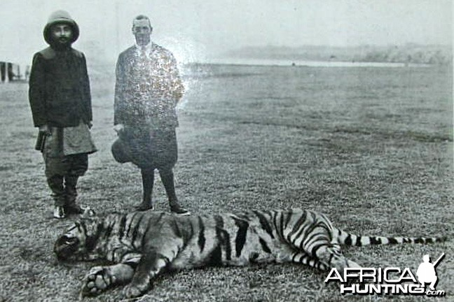 Hunting Tiger, King George and Sir Chandra Sher, Ruler of Nepal, 1911