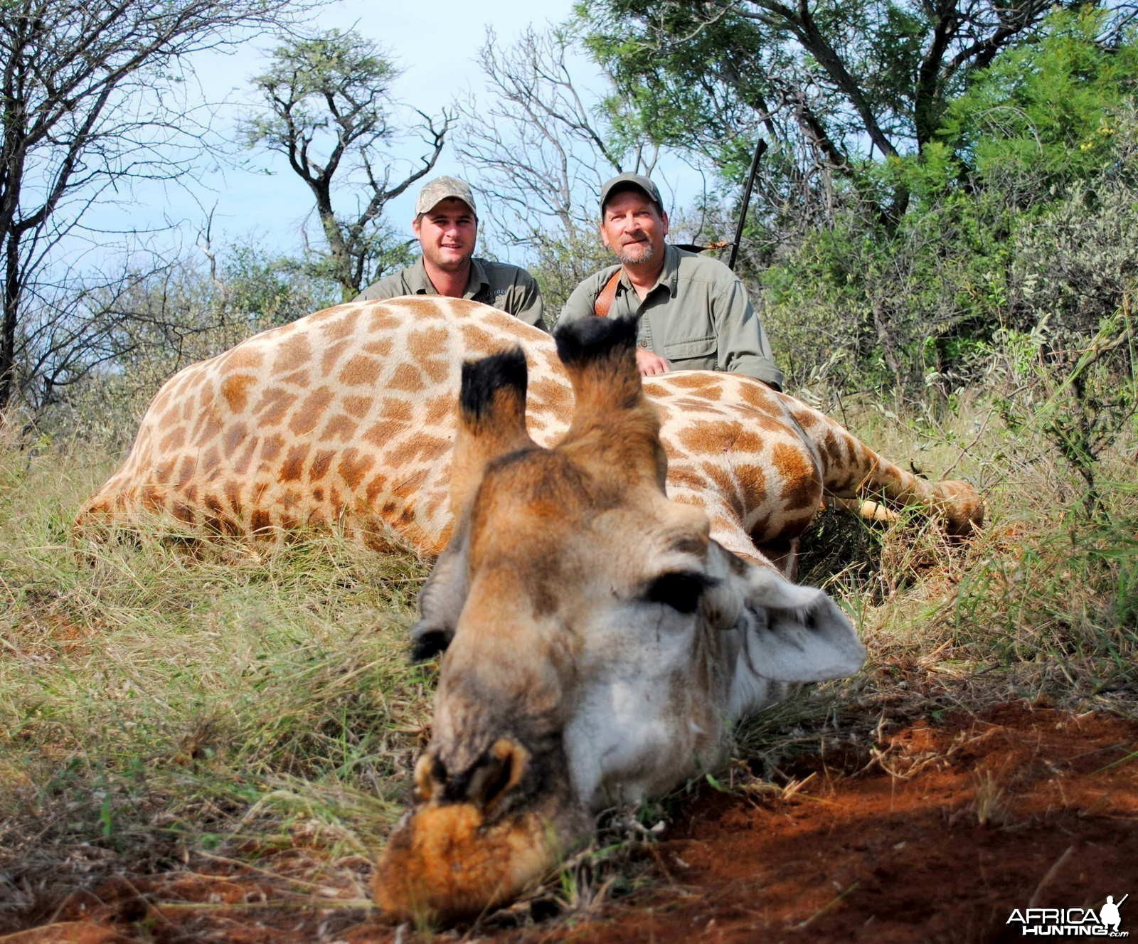 Hunting Giraffe South Africa