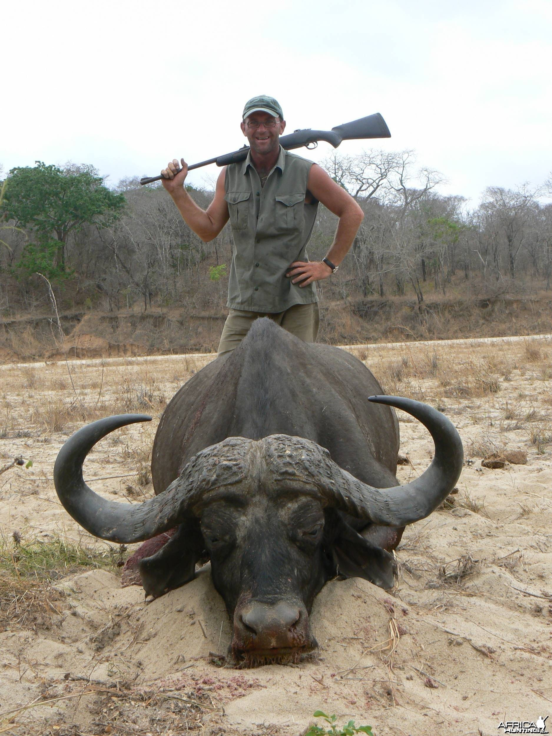 Tanzania. Cape buffalo. 42'