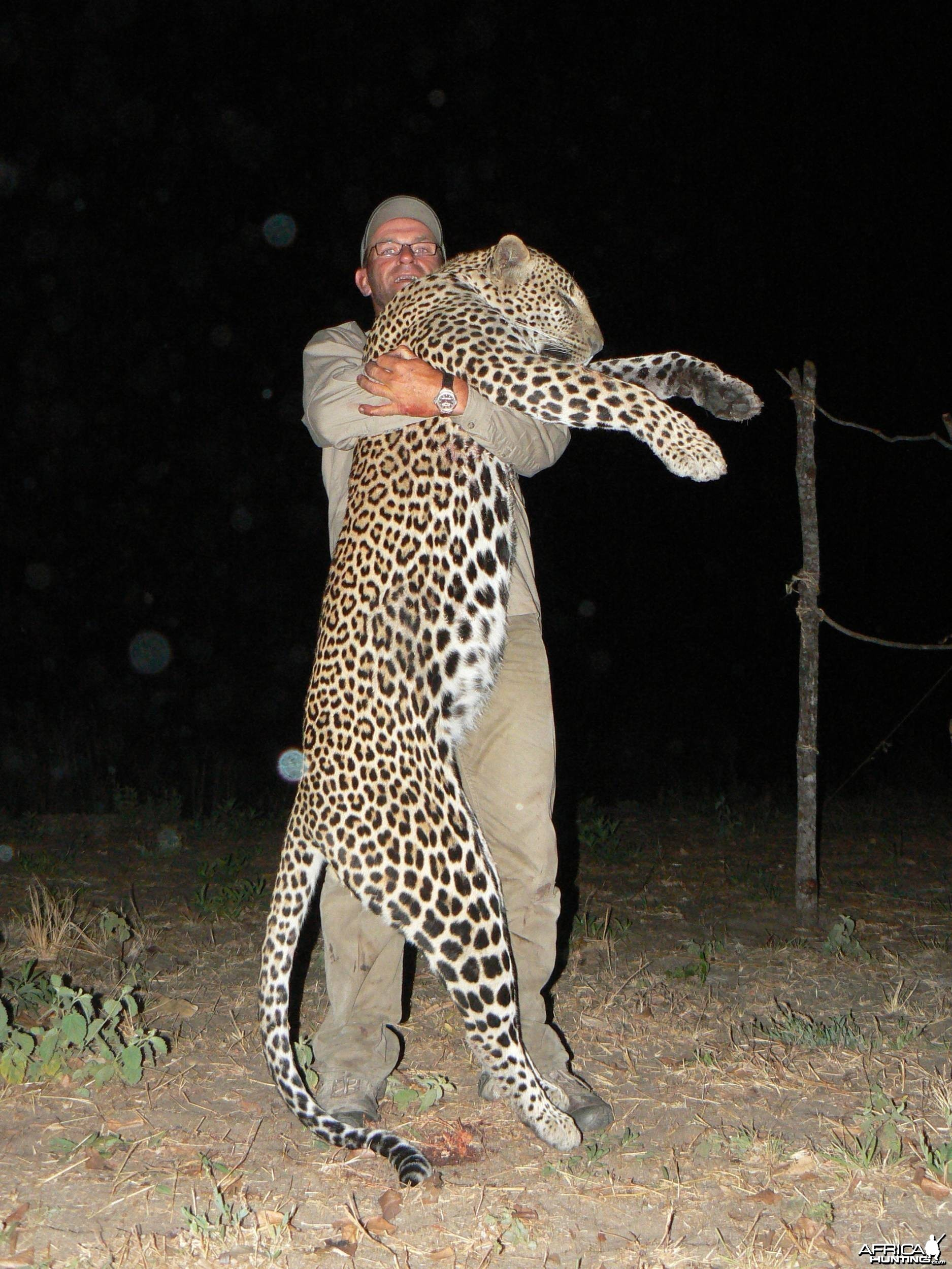 Leopard, 64kg from Selous game reserve. Tanzania