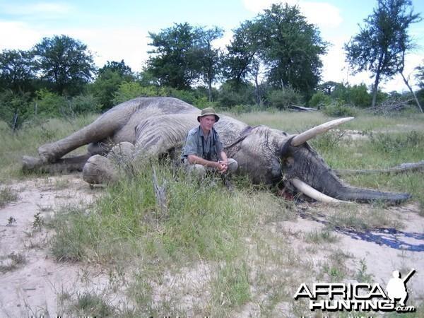 Dr. Jo Hall's Elephant