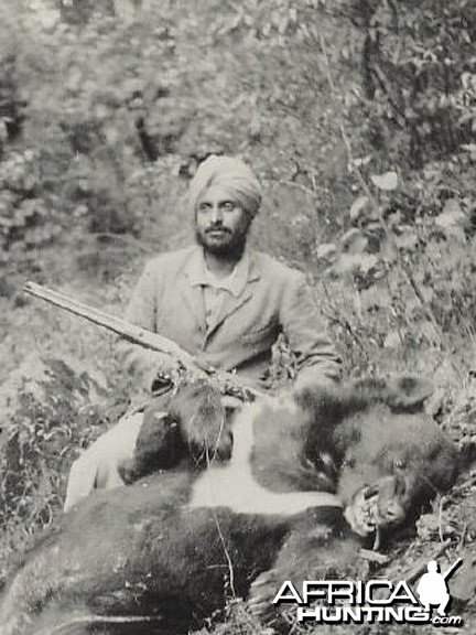 Indian hunter with a Himalayan Black Bear 1930s