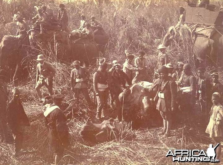 His Imperial Majesty's Shoot, Nepal 1911