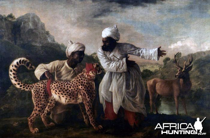 Indian Cheetah ready for the hunt, 1765