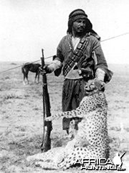 Bedouin hunter with a shot Asiatic Cheetah and cub, Iraq, 1925