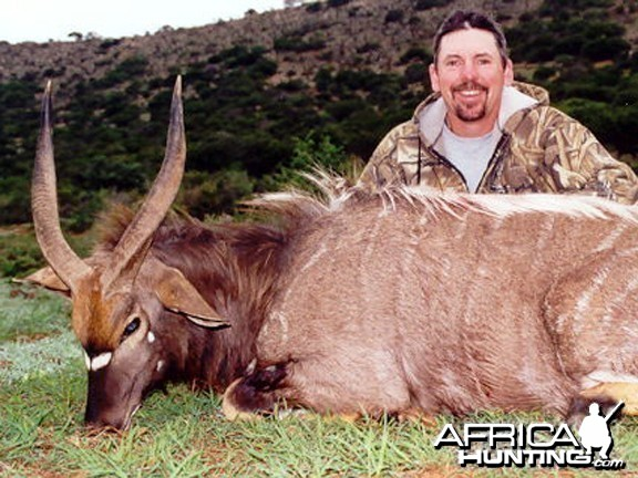 Nyala Hunt East Cape SA