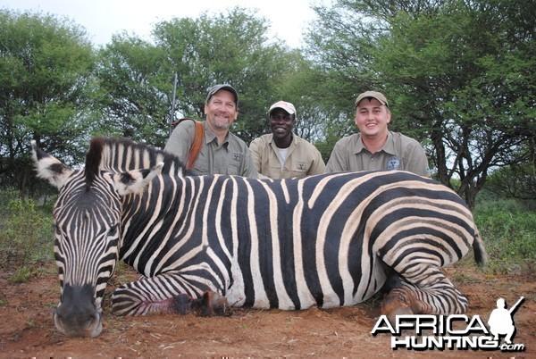 Burchells Zebra hunt Spiral Horn Safaris, South Africa