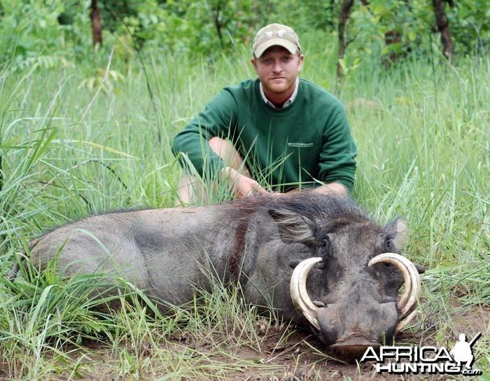 Warthog hunted in CAR with CAWA