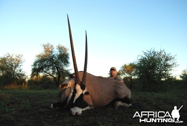 Gemsbok bull hunt in Limpopo RSA - 36 1/4 inches