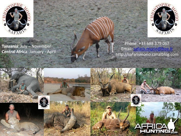 Safaris Morio - Hunting in CAR & Tanzania