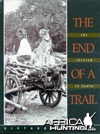 The End of Trail: The Cheetah in India (hard book)