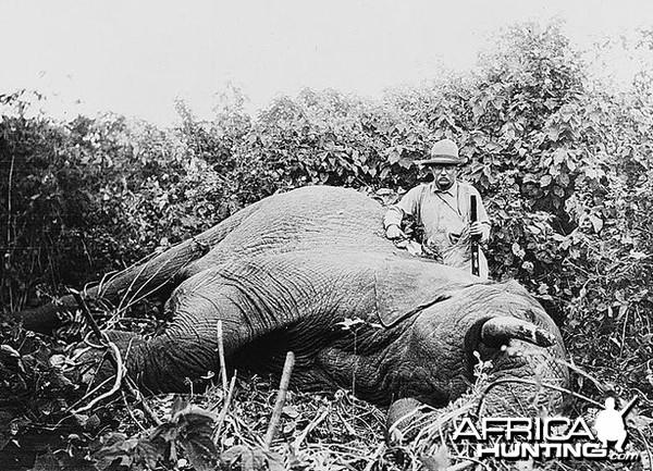President Theodore Roosevelt's 1909 hunting Elephant