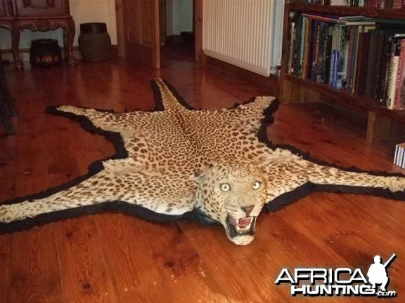 Taxidermist Van Ingen & Van Ingen Leopard Rug