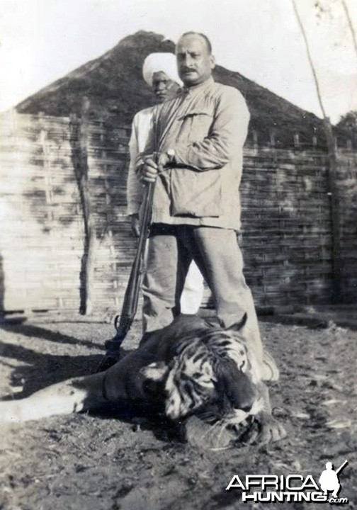 Grand Tiger Hunt