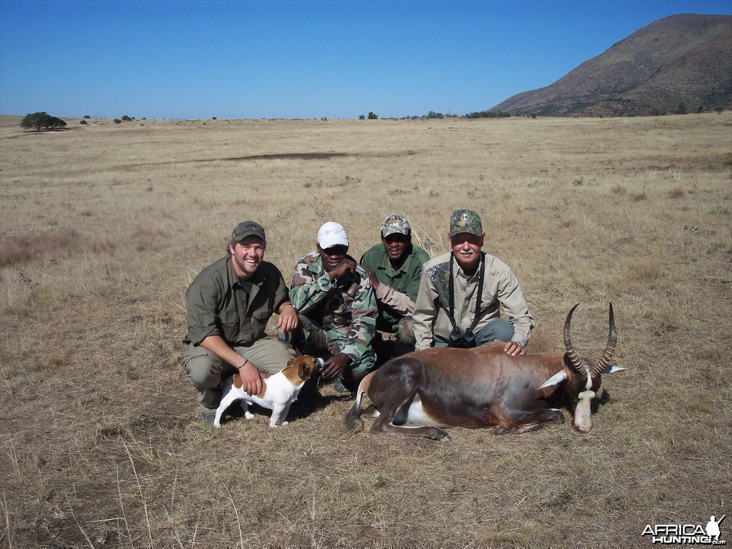 Blesbok Hunt East Cape South Africa