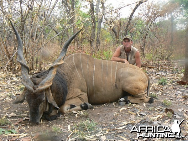 Big Eland bull from CAR, big neck, black hairs a truly great trophy