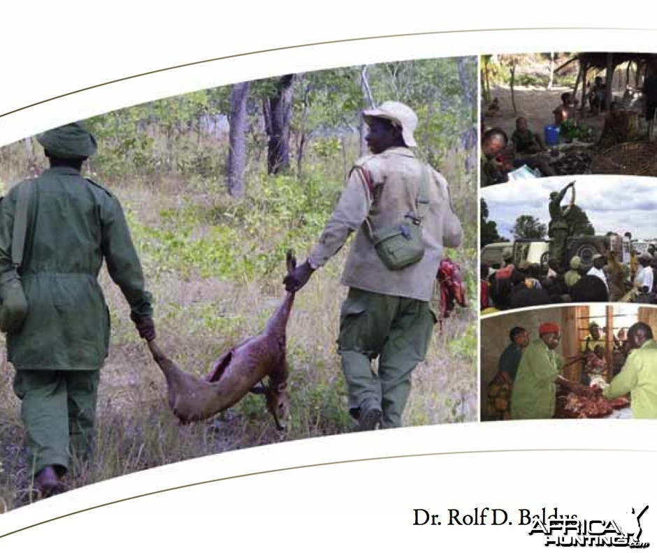 Wildlife Conservation in Africa
