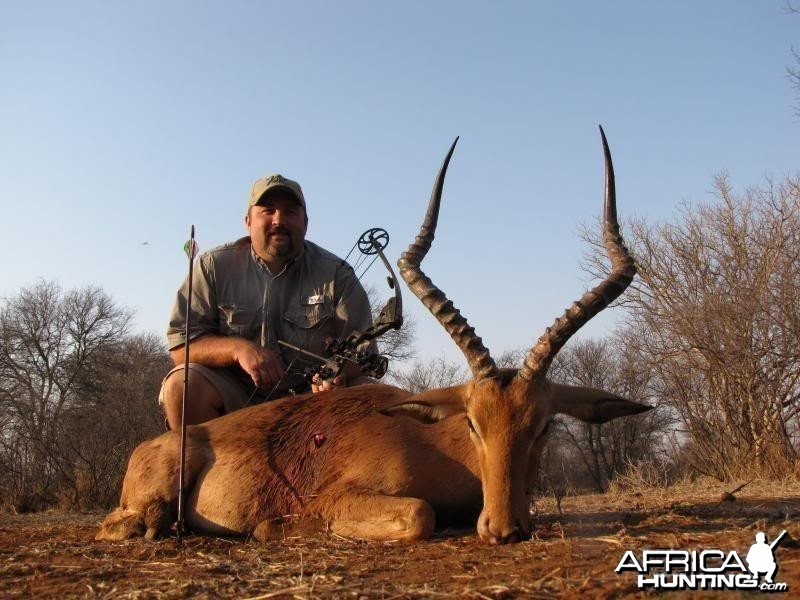 Impala South Africa 23.5 inches