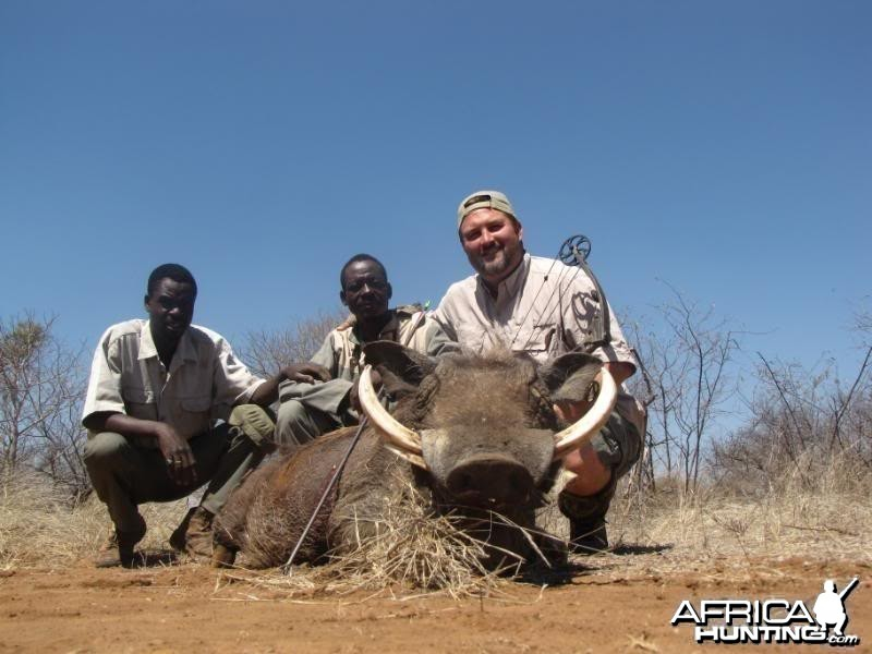 Warthog South Africa 12.5 inches