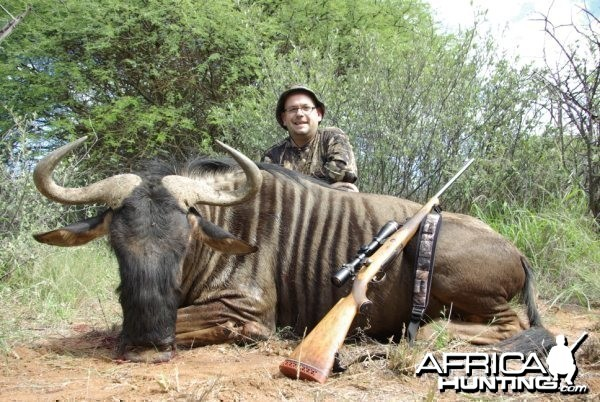 Hunting Safari in Limpopo, South Africa - Wildebeest