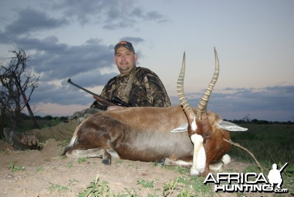 Hunting Safari in Limpopo, South Africa - Blesbok